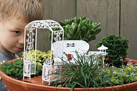Gardening-Guide-How-to-grow-a-miniature-garden_02-640x426
